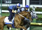 Gun Runner (outside) worked five furlongs in company with Gettysburg Sept. 24