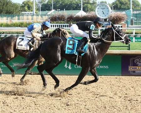 The Tabulator wins the 2017 Iroquois Stakes