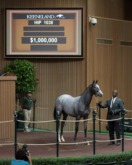 Hip 1038 filly by Tapit from Airdrie brings $1 Million from Don Alberto Keeneland sales scenes at Keeneland September yearling sale Sept. 14, 2017 in Lexington, Kentucky.