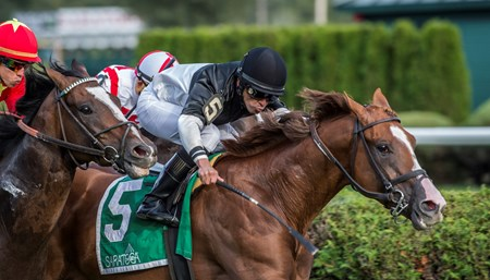 Voodoo Song with jockey Jose Lezcano aboard win the 110th running of The Saranac GIII Saturday Sept. 1, 2017 at the Saratoga Race Course in Saratoga Springs, N.Y.