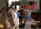 Keeneland September Sale Recap Day 4