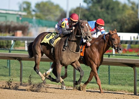 Awesome Slew and Corey Lanerie beating The Player in the Ack Ack on Saturday, September 30th, 2017 at Churchill Downs.
