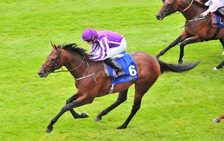 Mendelssohn and Ryan Moore win The Anglesey Lodge Equine Hospital Irish EBF Maiden.