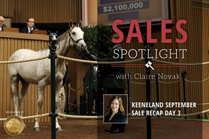 Keeneland September Sale Recap Day 3