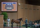 Hip 359, a Street Sense filly, brings $750,000 at the Keeneland September yearling sale