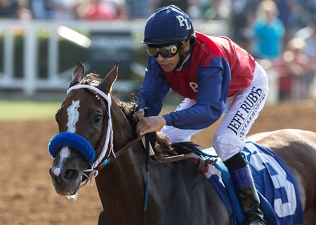 Miss Sunset wins the 2017 C.E.R.F. Stakes