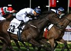 She Will Reign gets up in the final strides to win the Moir at Moonee Valley