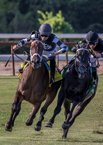 Mr. Misunderstood (outside) turns for home in the Super Derby Sept. 9 at Louisiana Downs
