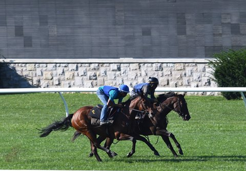 Lady Aurelia (outside) working in company with Childhood at Keeneland Sept. 26