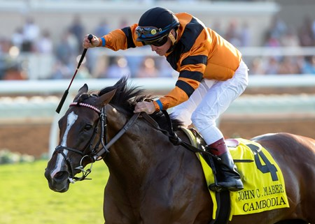 Winter Quarter Farm's Cambodia and jockey Drayden Van Dyke win the G2, $200,000 John C. Mabee Stakes, Saturday, September 2, 2017 at Del Mar Thoroughbred Club, Del Mar CA.