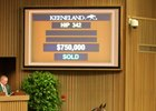 Hip 342, an Into Mischief colt, brings $750,000 at the Keeneland September yearling sale