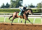 Captivating Moon works at Keeneland Sept. 30