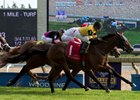 Untamed Domain passes Hemp Hemp Hurray in the final strides of the Summer Stakes Sept. 17