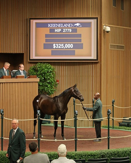 Hip 2779 colt by Stay Thirsty from Candy Trophy and Betz Thoroughbreds brings $325,000 from Bob Hess.