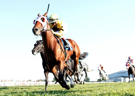 Big Bend wins the Dueling Grounds Derby at Kentucky Downs