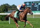 Off Limits speeds to victory in the Noble Damsel