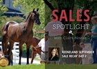 Keeneland September Yearling Sale Recap Day 2