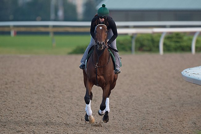 Long On Value gallops at Woodbine