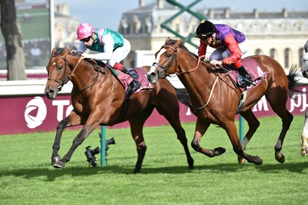 Ice Breeze wins the 2017 Qatar Prix Chaudenay