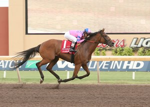 Champagne Room wins the Remington Park Oaks under a hand ride