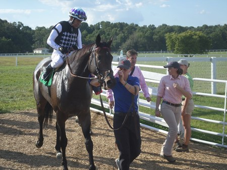 Miss Temple City is led to the winner's circle after capturing the 2017 Kentucky Downs Ladies Turf on Sept. 9 with Hall of Fame jockey Edgar Prado aboard. Her trainer, Graham Motion, is at the rear on the right.