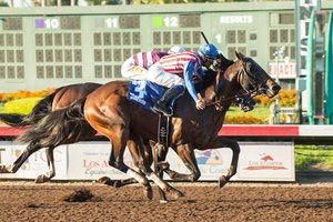Run Away wins the Barretts Juvenile Stakes