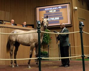 The $2.7 million sale topper (Hip 69) was one of three yearlings by Tapit to sell for more than $2 million
