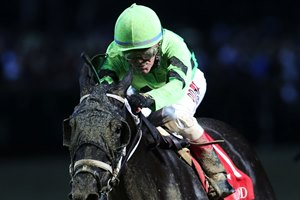 Pinch Hit wins the Dogwood Stakes by a neck over Champagne Problems at Churchill Downs
