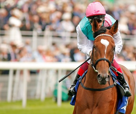 Enable's year-end honors come on the heels of a dominant season