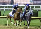 Gun Runner (outside) works five furlongs in company with Gettysburg Sept. 24