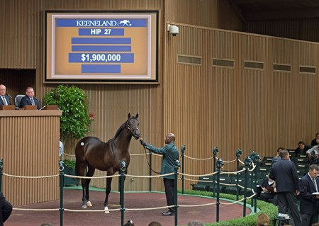 Hip 27, 2017 Keeneland September Sale