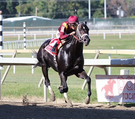 Coal Front Digs In To Win Gallant Bob Stakes Bloodhorse