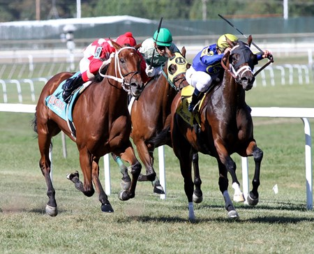 Firsthand Report  wins the 2017 Alphabet Soup Stakes