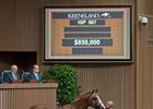 Hip 987, a colt by Curlin, brought $850,000