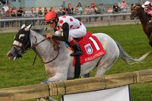 World Approval moved into the 10 slot in this week's NTRA Top Thoroughbred Poll