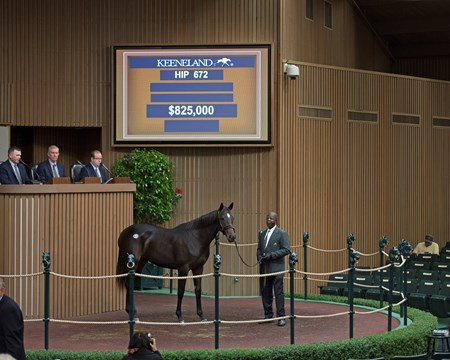 Hip 672 filly by Pioneerofthe Nile from R Gypsy Gold and Four Star Sales brings $825,000 from Ruiz Racing Stable