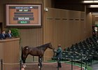 Hip 1547, a bay colt by Pioneerof the Nile, sells for $525,000