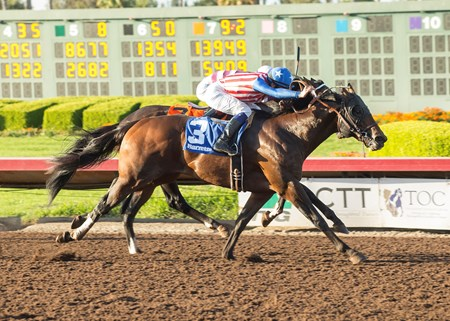 Run Away wins the 2017 Barretts Juvenile Stakes