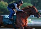 Dortmund in training at Santa Anita Park in September