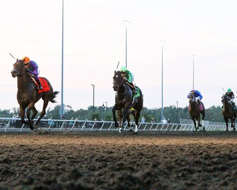 Ami's Mesa wins the grade 2 Presque Isle Downs Masters Stakes in track-record time