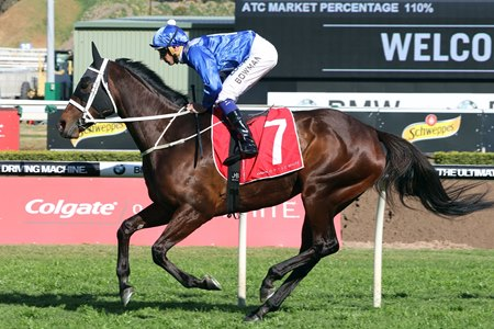 Winx wins her 20th straight race in the Colgate Optic White Stakes Sept. 16