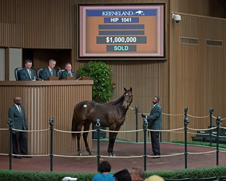 Hip 1041 filly by Scat Daddy from Beloveda brings $1 Million from Kerri Radcliffe Keeneland sales scenes at Keeneland September yearling sale Sept. 14, 2017 in Lexington, Kentucky.