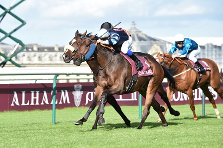 Garlingari wins the 2017 Qatar Prix Dollar over Subway Dancer