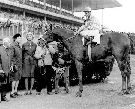 Secretariat after 1973 Bay Shore Handicap