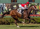 Lady O'Toole scores in the Happy Ticket Stakes at Louisiana Downs