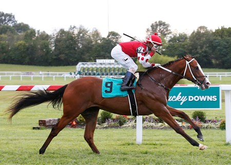 Snapper Sinclair wins the 2017 Fasig-Tipton Turf Showcase Juvenile Stakes