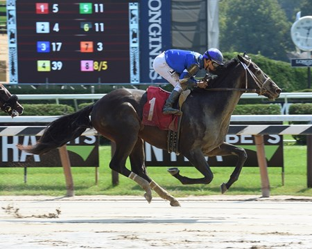 Enticed - Maiden Win, Saratoga - September 4, 2017