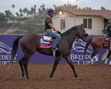 American Pastime Breeders' Cup horses on track at Del Mar racetrack on Oct. 30, 2017 Del Mar Thoroughbred Club in Del Mar, CA.