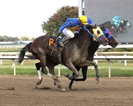 Power of Snunner #6 with Dana Whitney riding won the $100,000 Plum Pretty Stakes at Parx Racing Bensalem, Pennsylvania over #5 Trace of Grace and Edwin Gonzalez on Saturday October 7, 2017.
