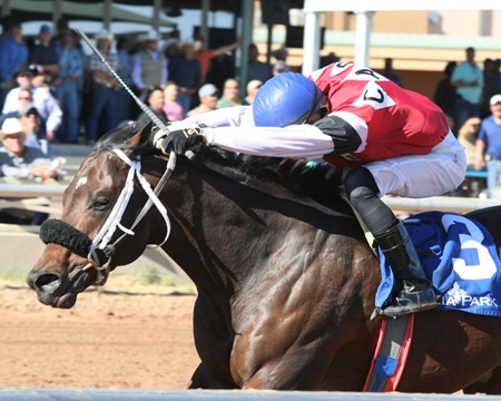 My Mirage wins the 2017 New Mexico Classic Cup Derby Championship Stakes